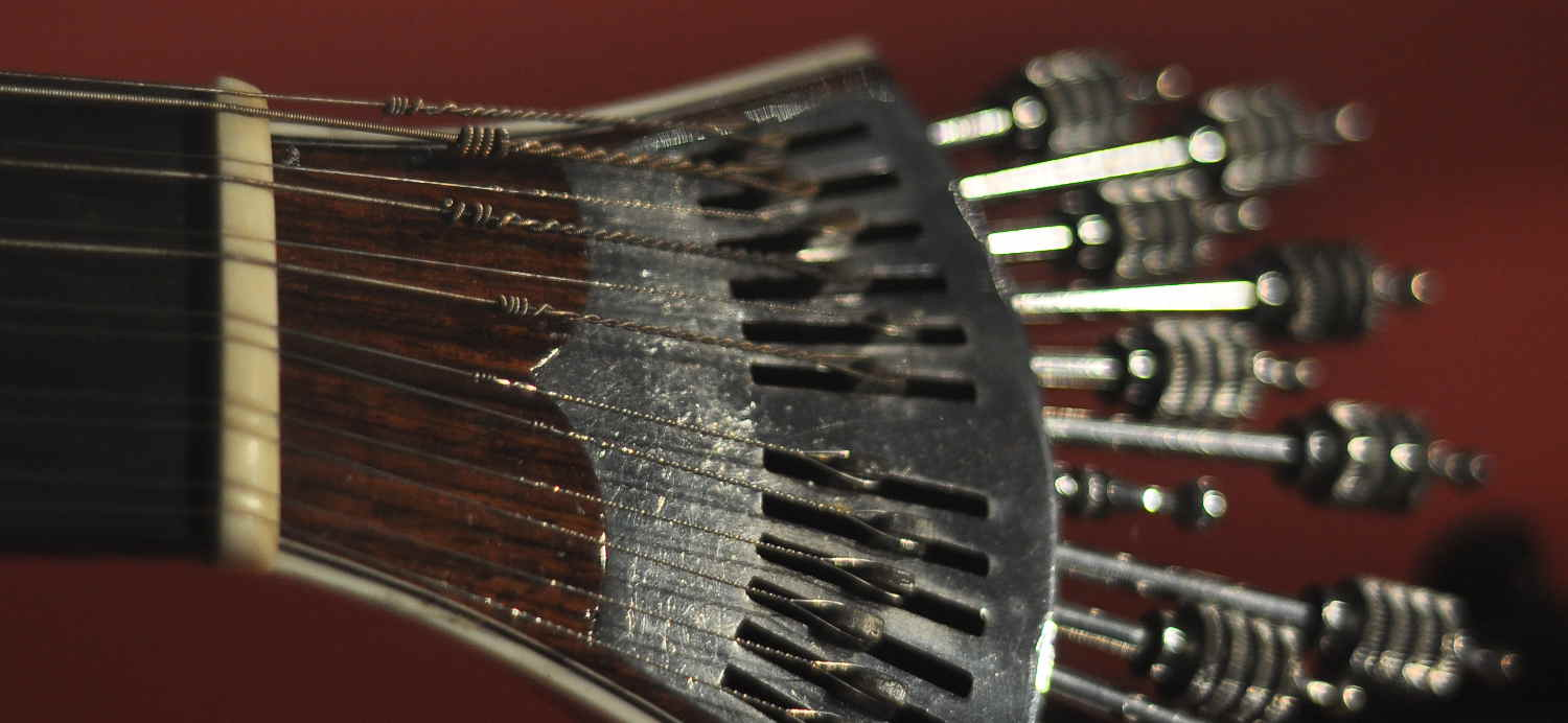 Head of a Chapman Stick